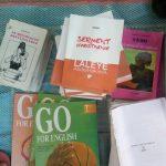 Bénin : Il écope de 12 mois de prison ferme pour avoir falsifié le roman Serment d'abstinence